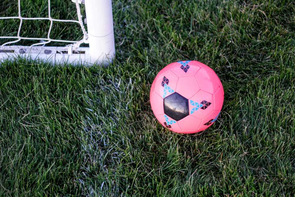 pink rubber ball beside goal net