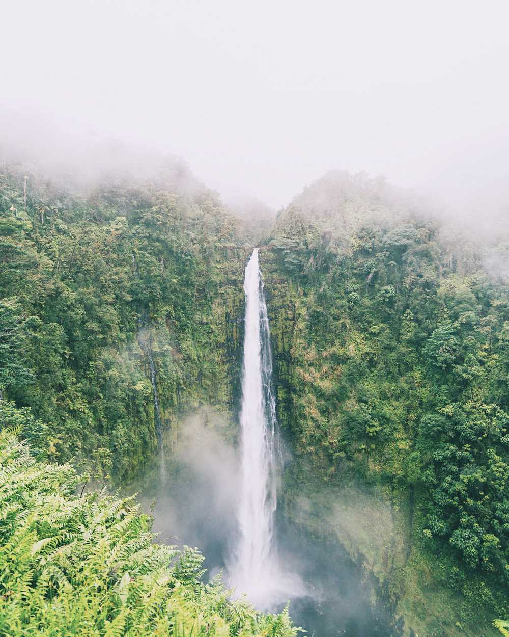 Foggy Akaka falls in Big island