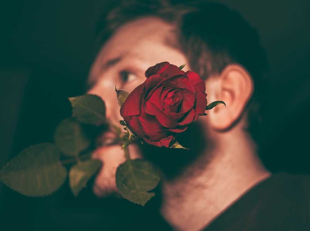 man biting red rose in closeup shot