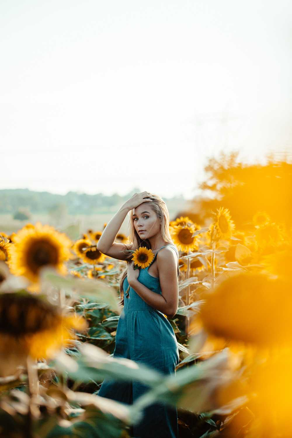 shallow focus photography of woman holding yellow sunflower