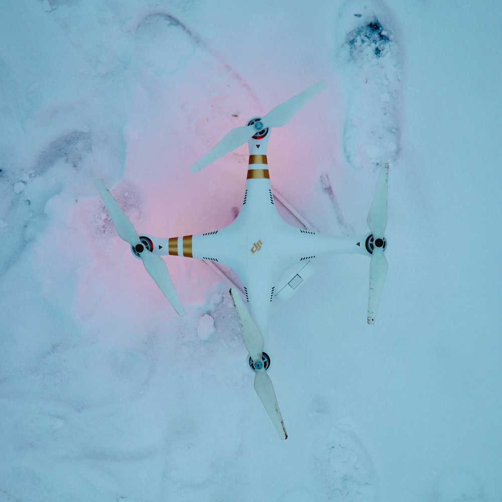 DJI Phantom standard on snowfield